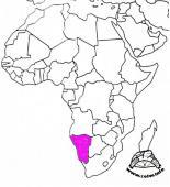 Homopus bergeri - występowanie