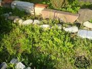 Fragment prowizorycznego ogrodzenia wybiegu